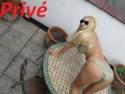 Prive ontvangst in Huis Tania Blonde Prive